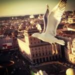 Flying in Rome