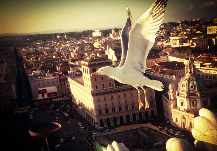 Flying in Rome